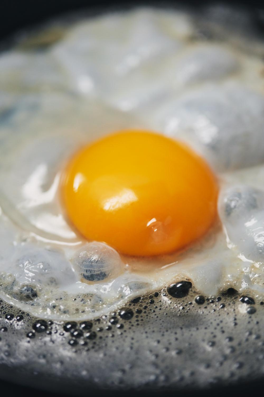 18026&PR-PRO_Egg_0771.jpg