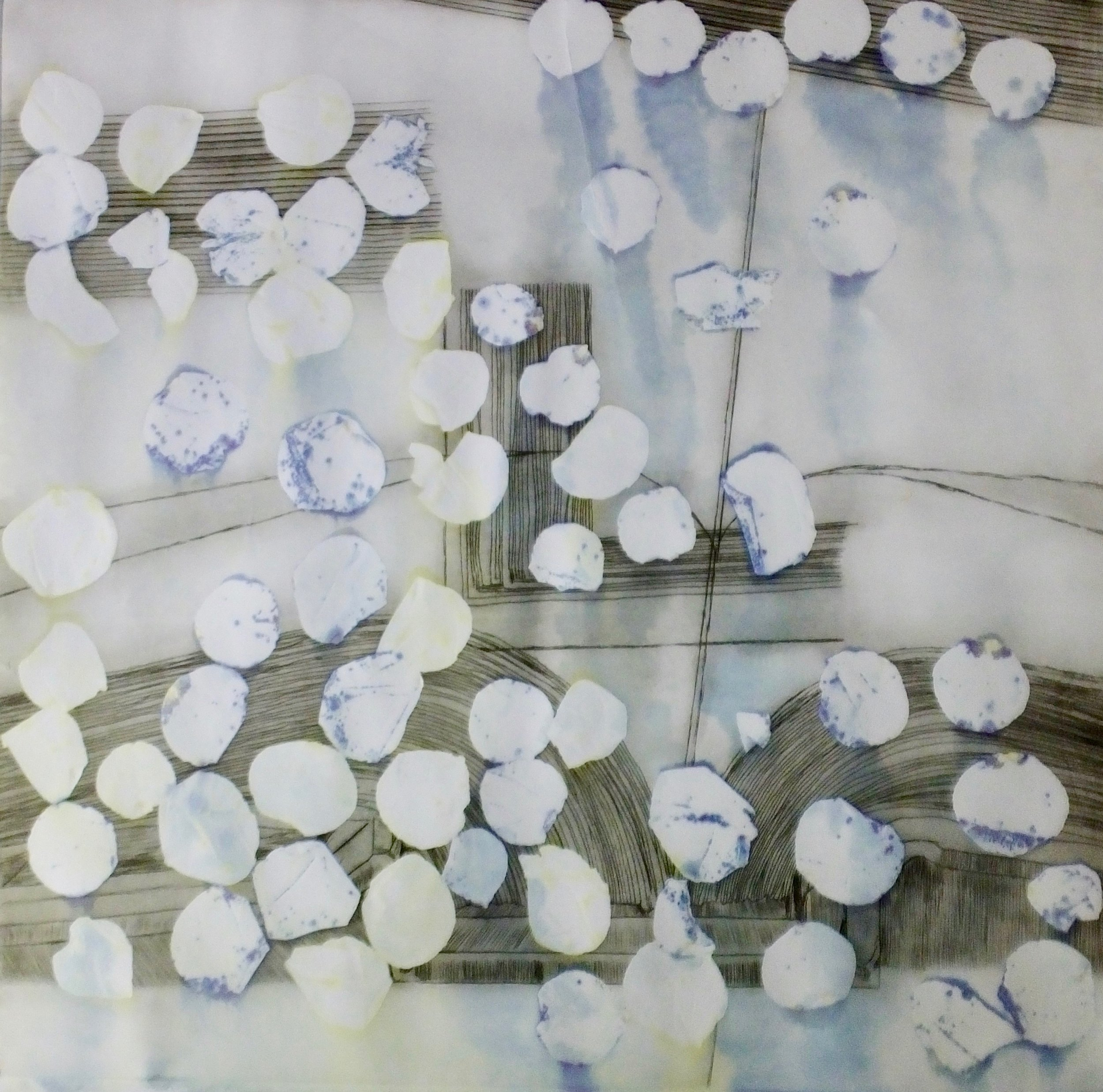 Archive P3. Rose Petal transfer etching