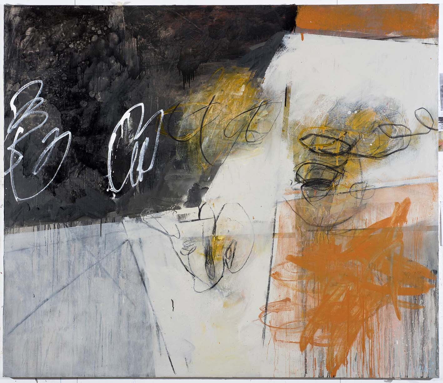 Day Bowman_Plashy Place 1_oil and charcoal and conte on canvas_172  x 200 x 4 cm_2018_DSC_2556.jpg