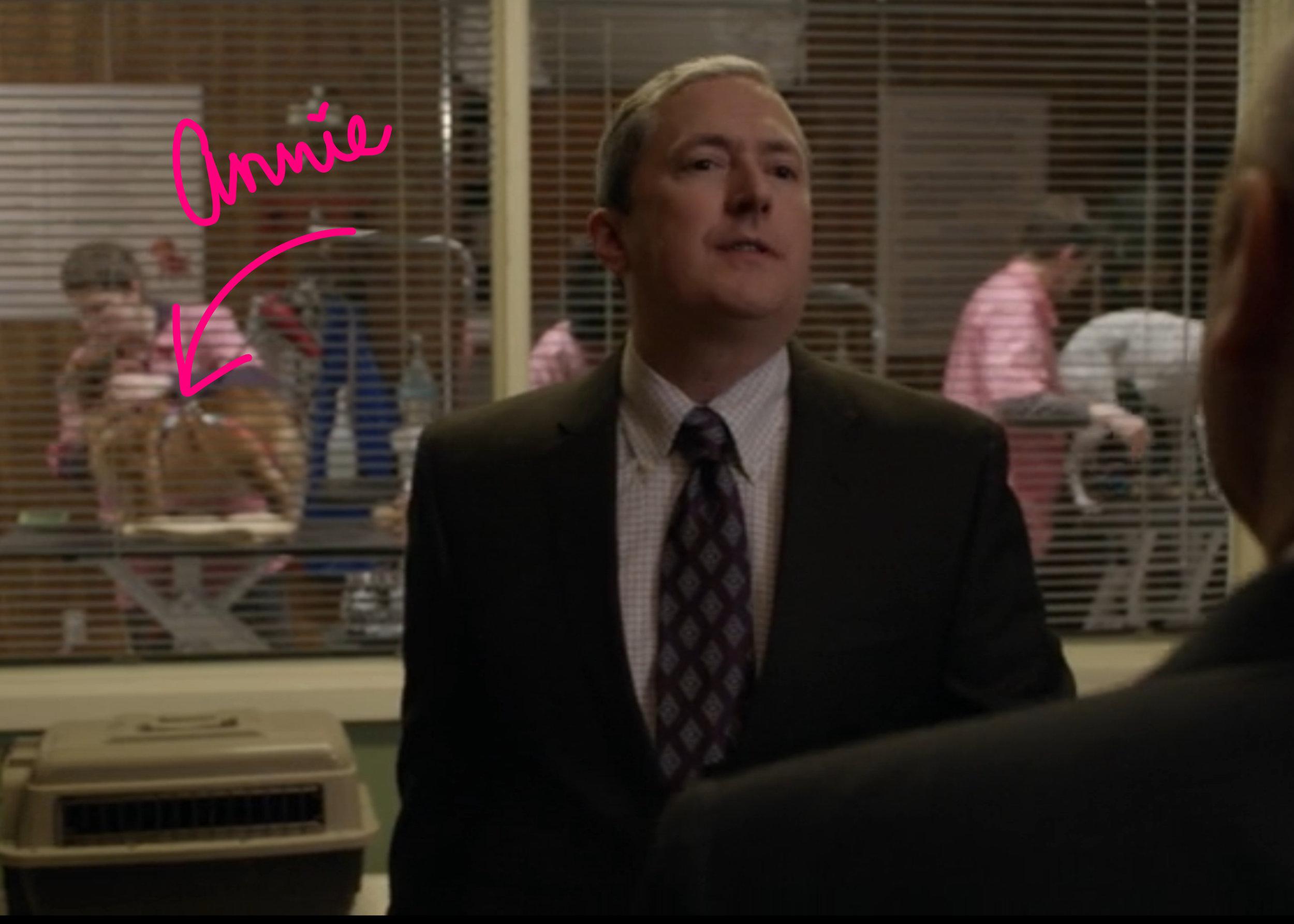 "screenshot from ""The Blacklist"" (NBC)"