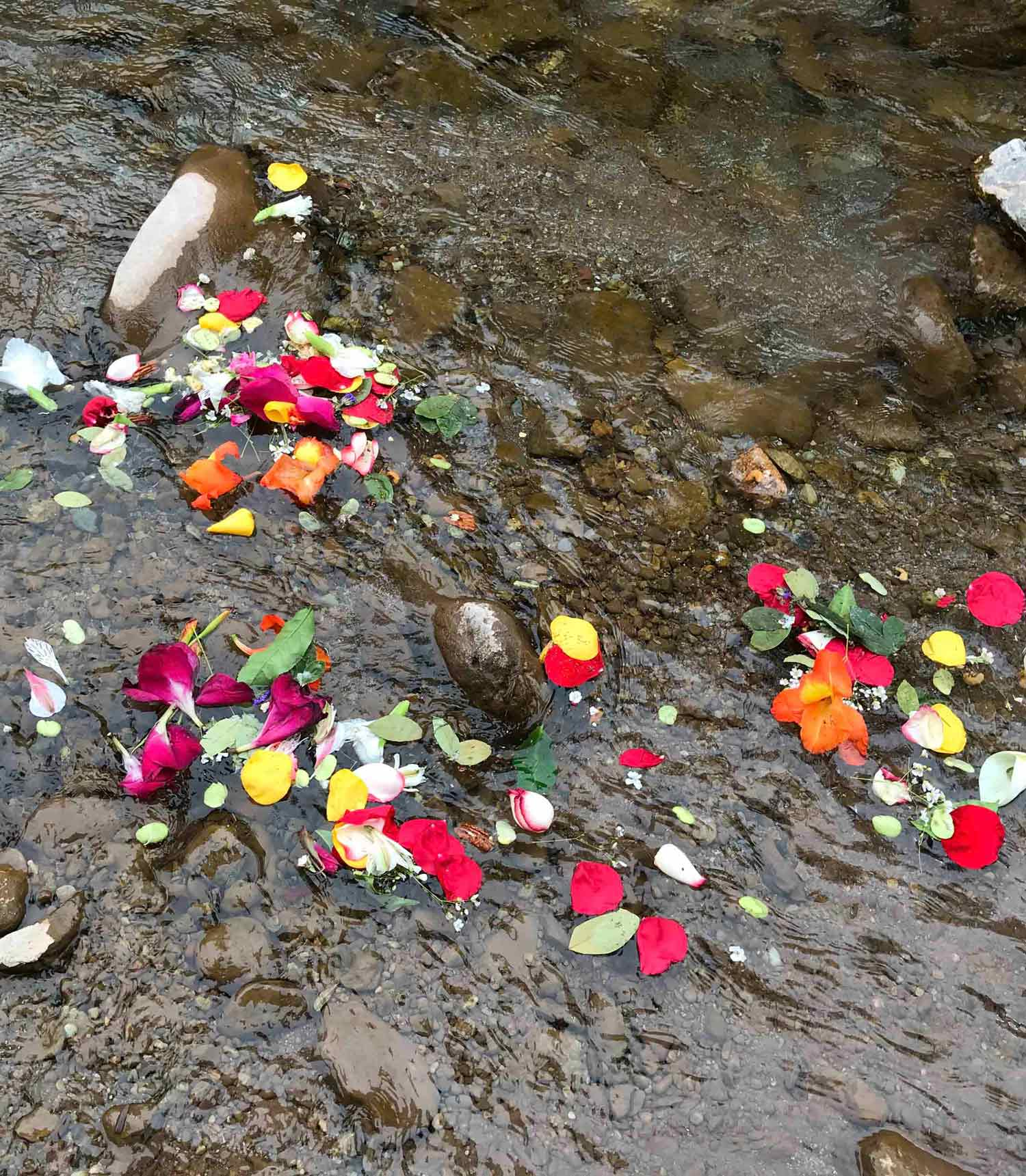 Sacred Offering in the river.jpg