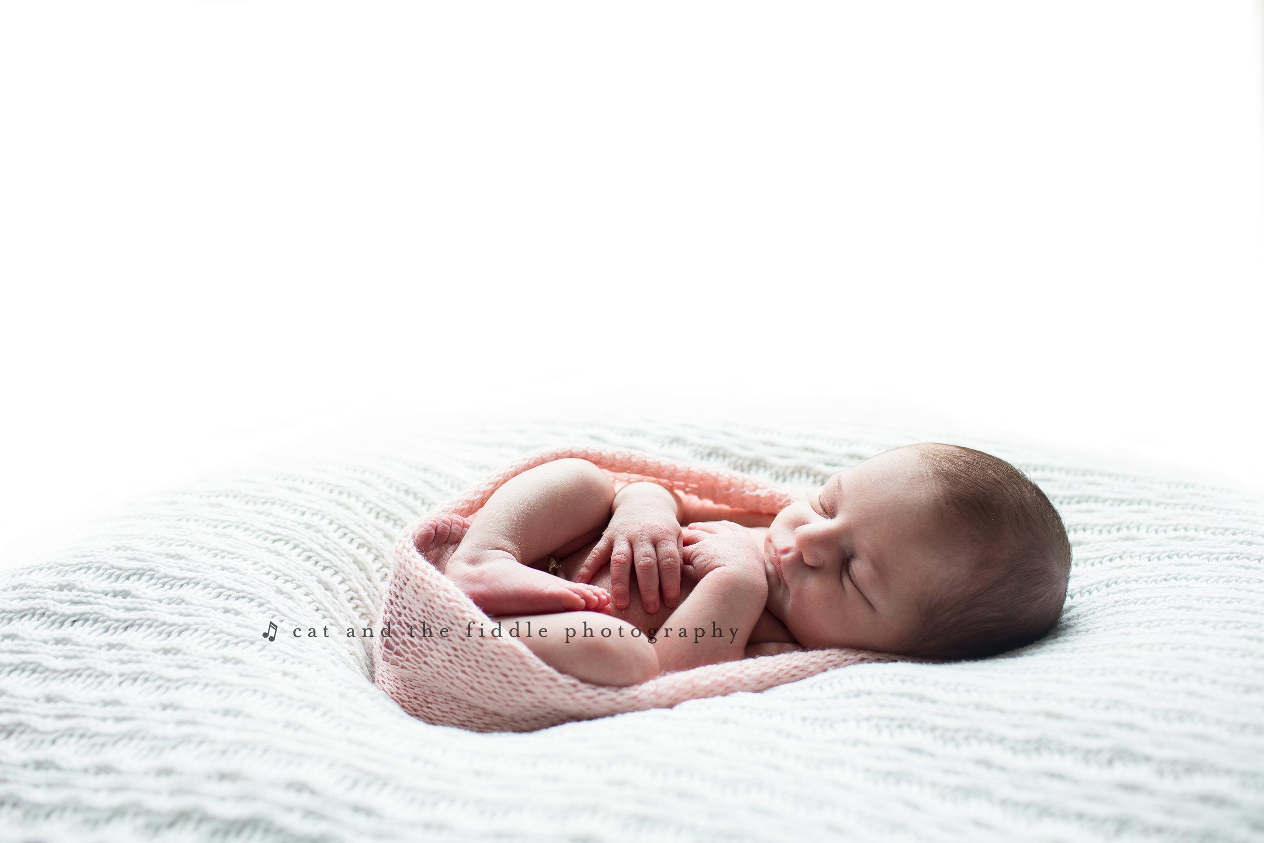 Ellicott City Newborn Photographer 4.jpg