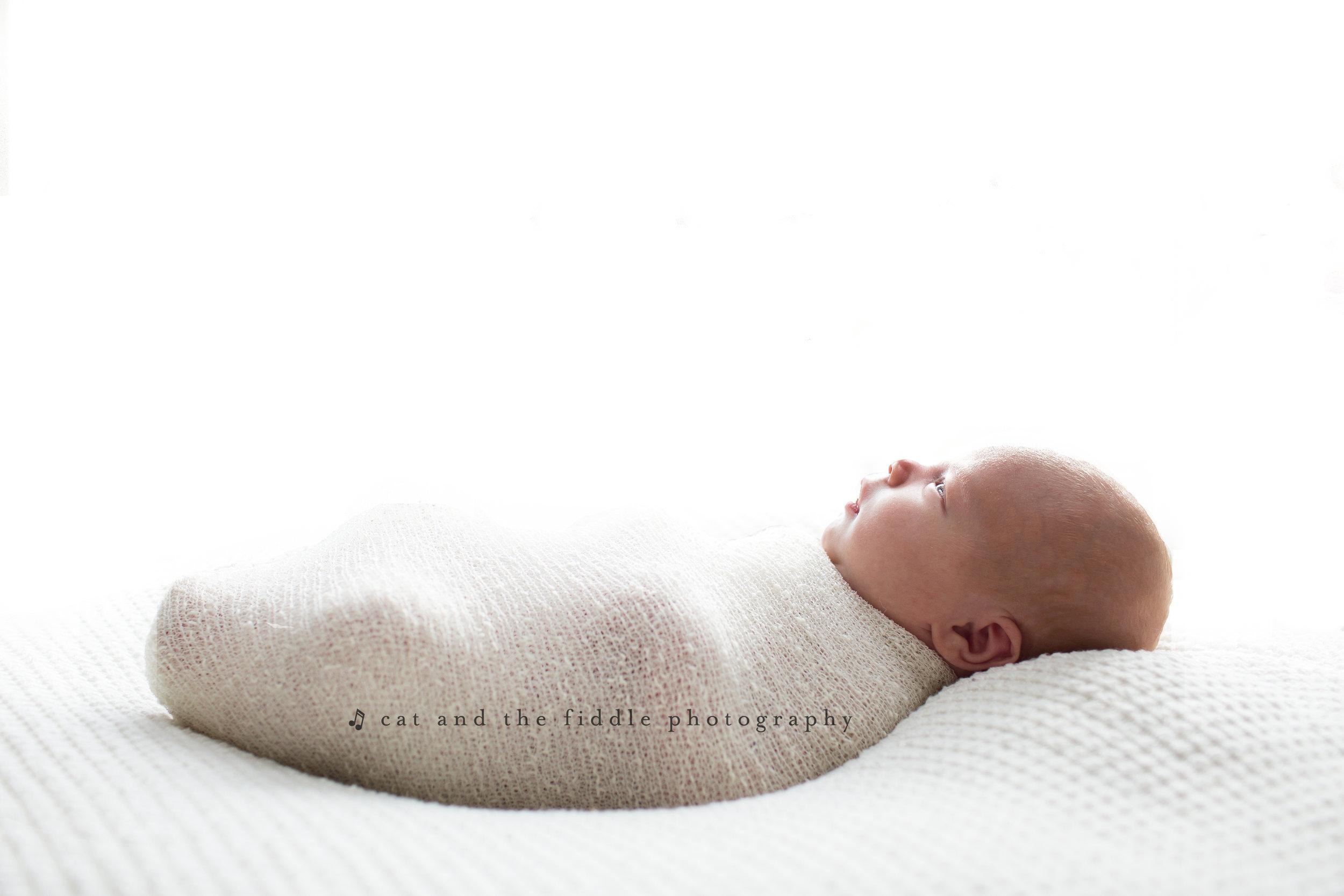 Easton MD Newborn Photographer 3.jpg