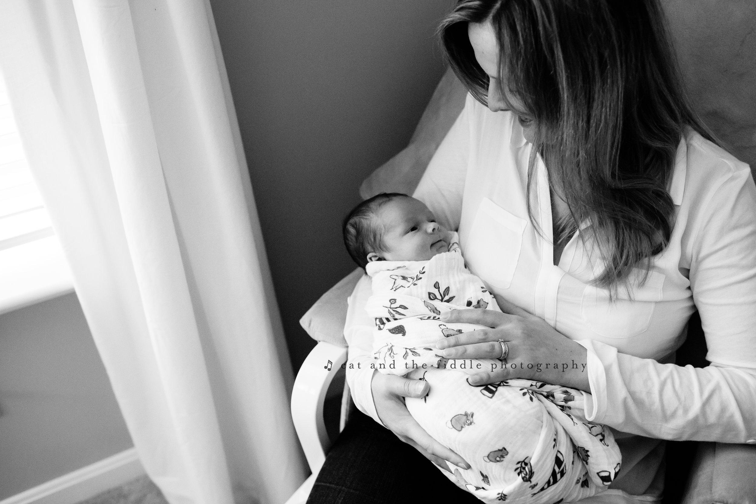 Centreville MD Newborn Photographer 1.jpg