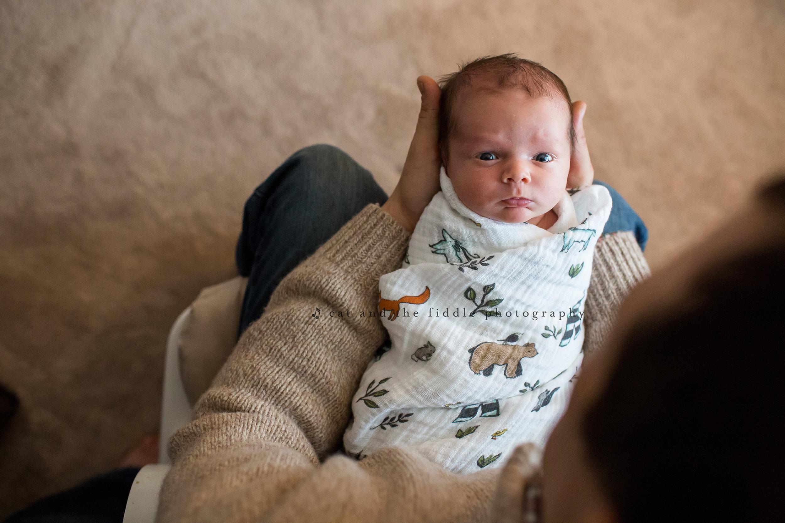 Stevensville MD Newborn Photographer 5.jpg