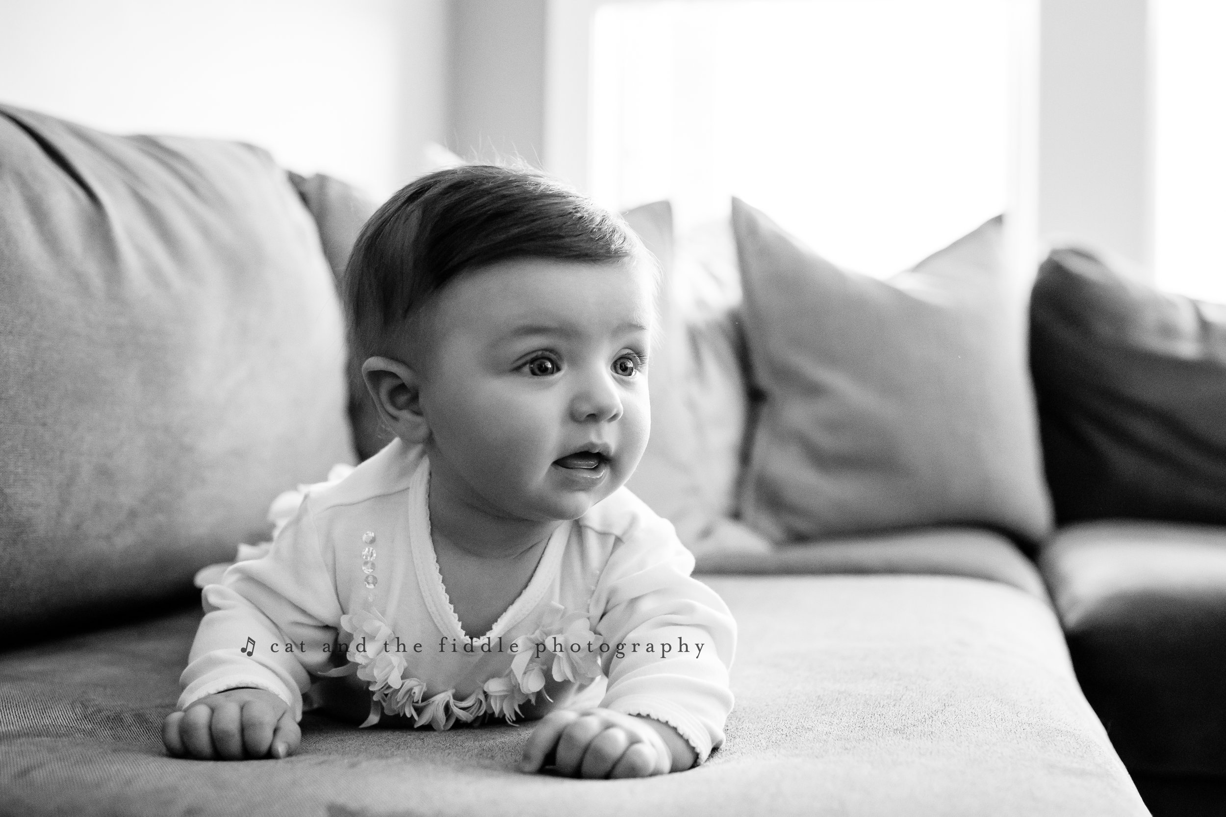 Washington DC Newborn Photographer 5.jpg