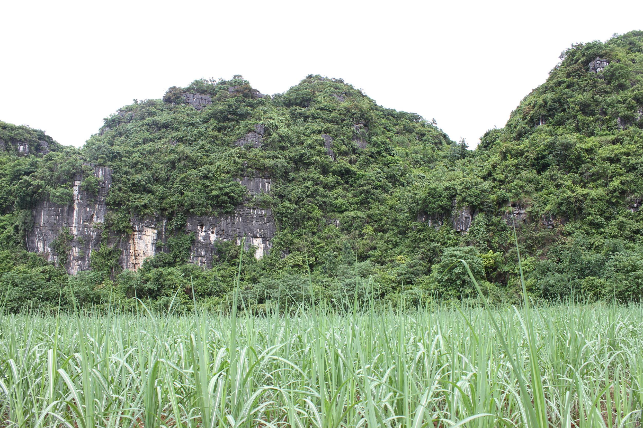 Yixiantian Cave -