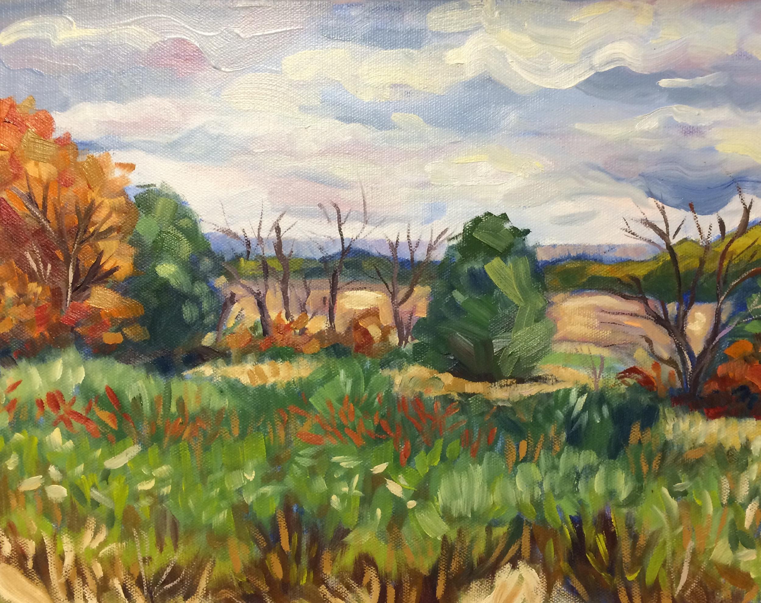 Audubon Fields
