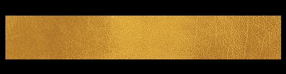 gold-main logo.png