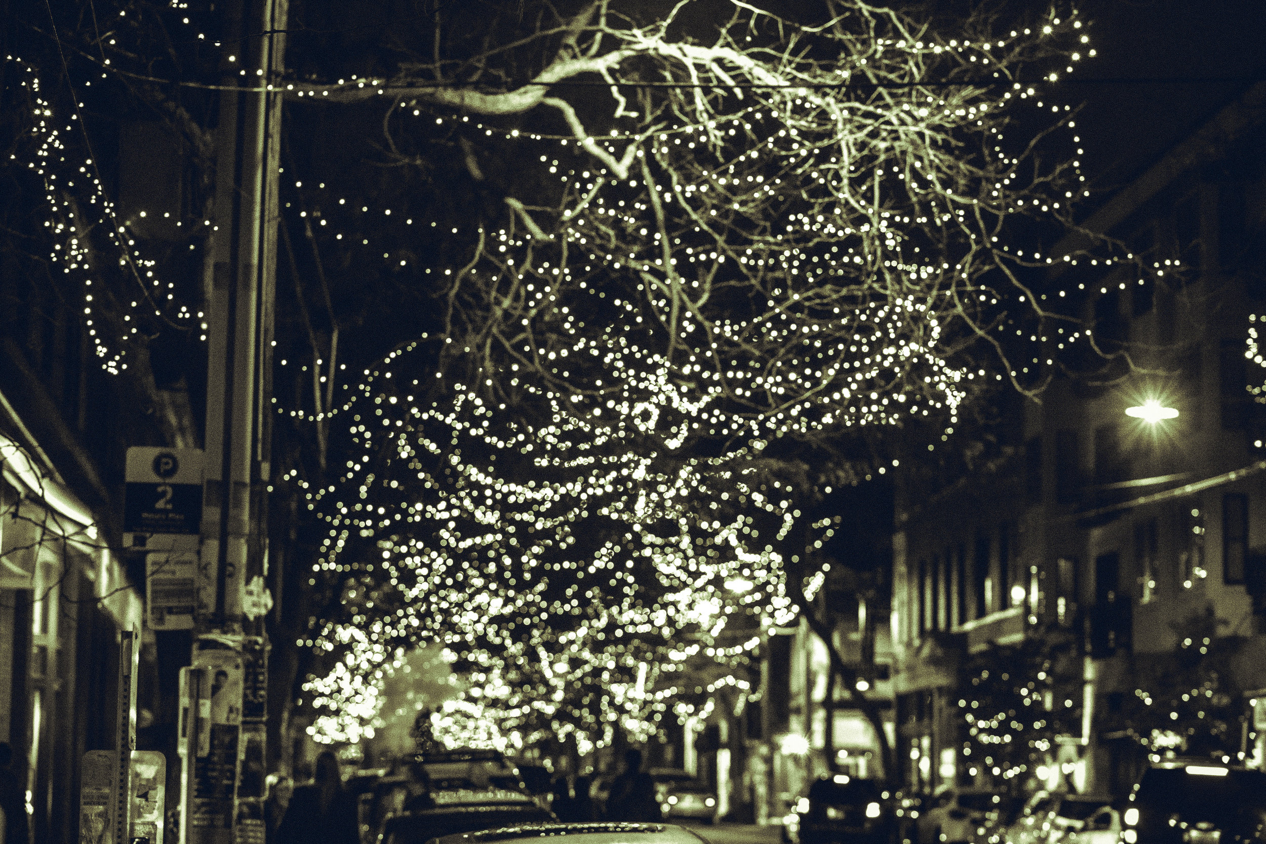 I'll also make an assumption and say the city of Ballard means to include Thanksgiving as part of the celebration and not just as month and a half early Christmas lights. Save your Christmas trees until after the 23rd of this month! Gobble Gobble.