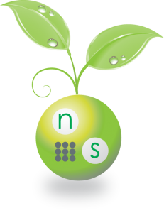 NS-Sprig-231x300.png