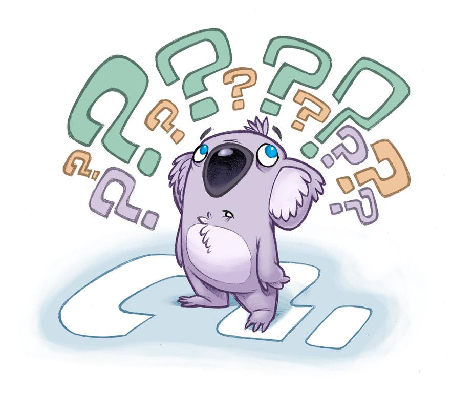 koala_final_010.jpg