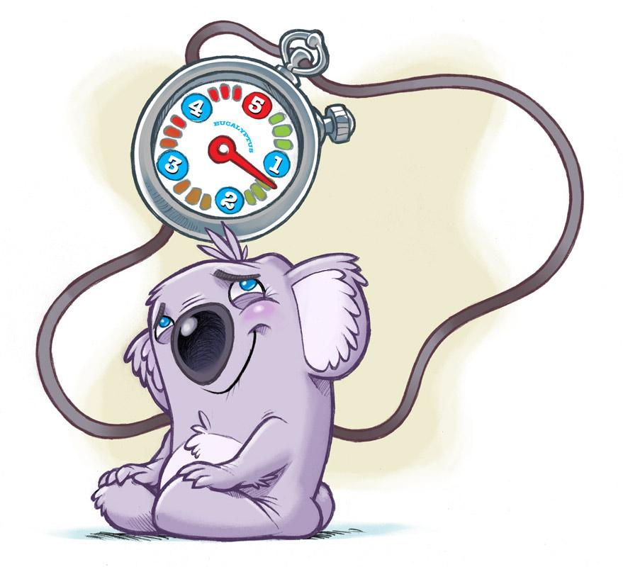 koala_final_013.jpg