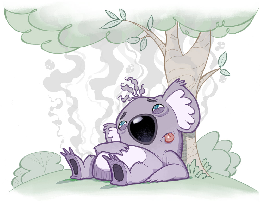 koala_final_031.jpg