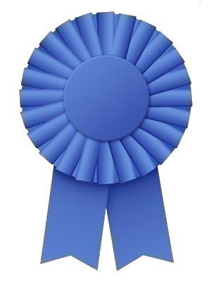 blue-ribbon.jpg
