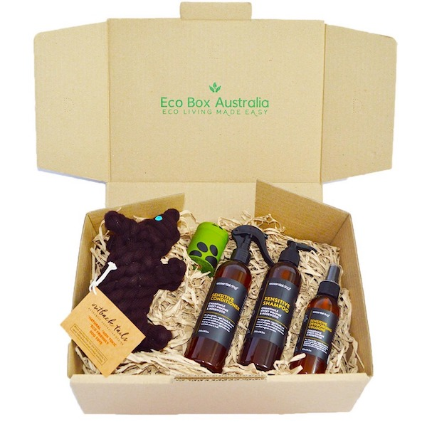 Eco Pet Box.jpg