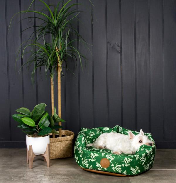 Pooky & Boo dog bed.jpg