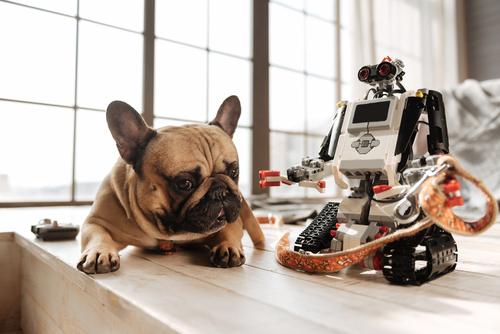 Pet technology - dog apps.jpg