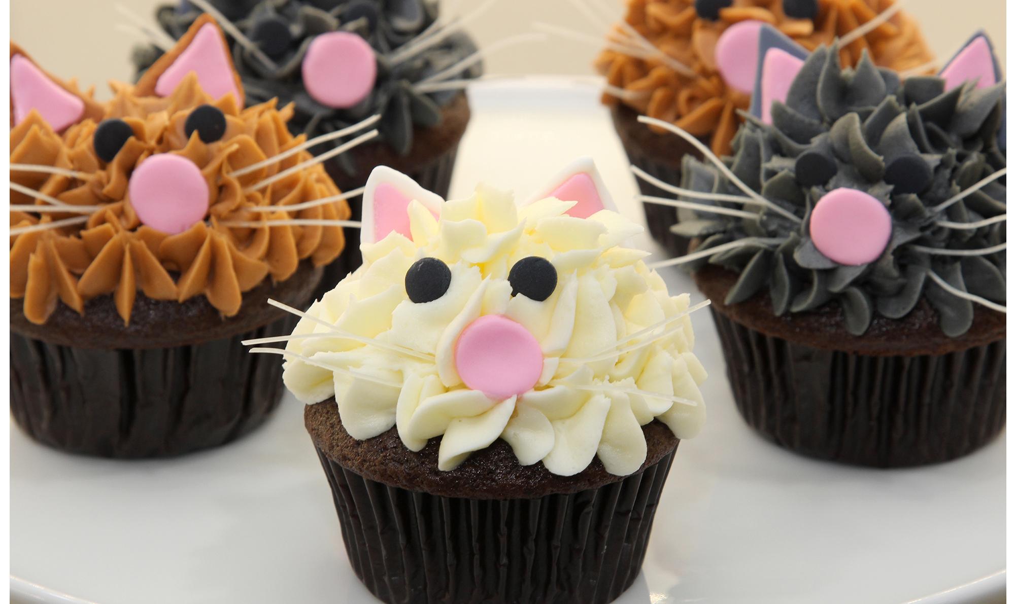 Chocolate Kitty Cupcakes