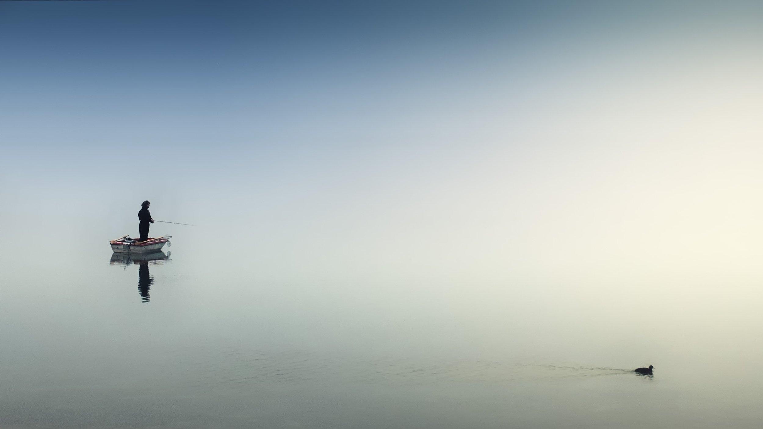 boat-daytime-duck-1105386.jpg