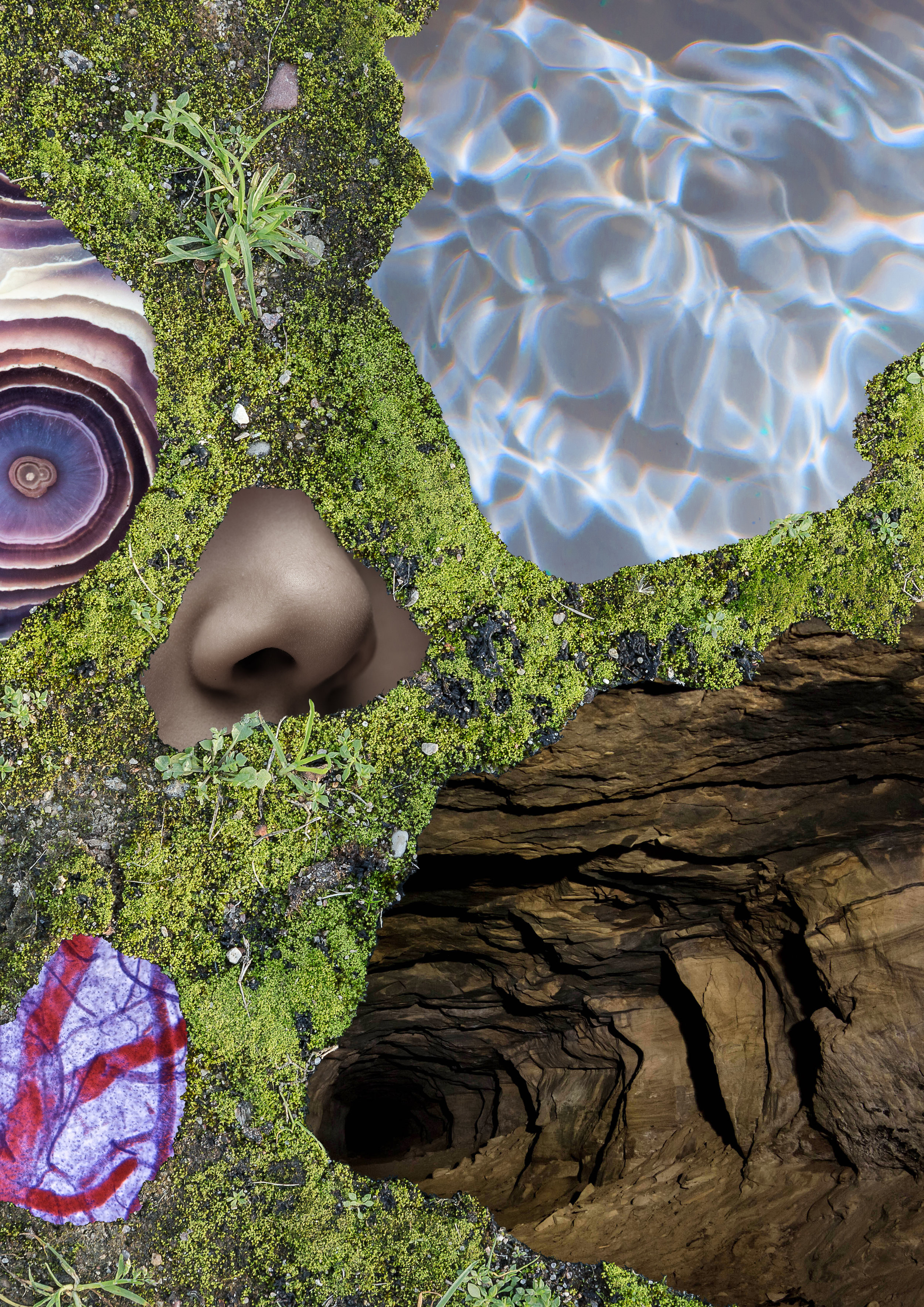 Nature+Emotion11.jpg