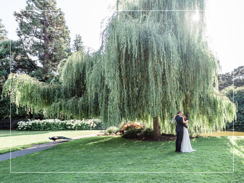 1. Beacon Hill Park wedding ItkasanImages  COVER.jpg