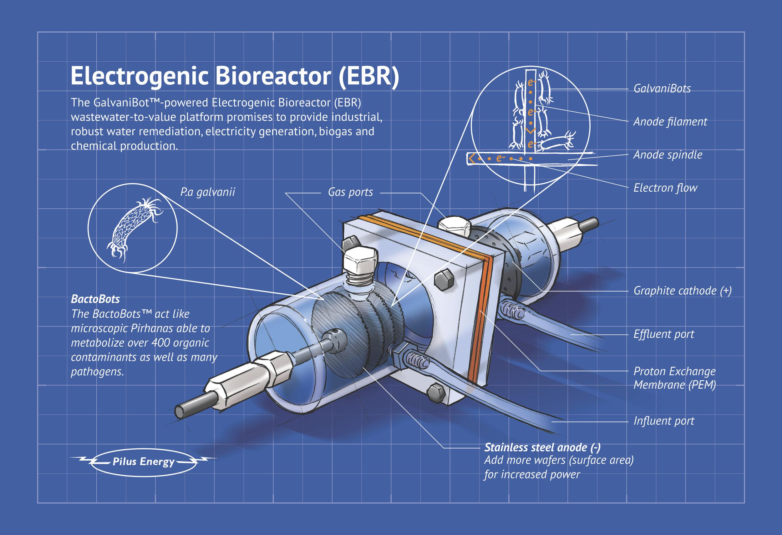 Pilus EBR reactor infographic print v2-4traz copy.jpg