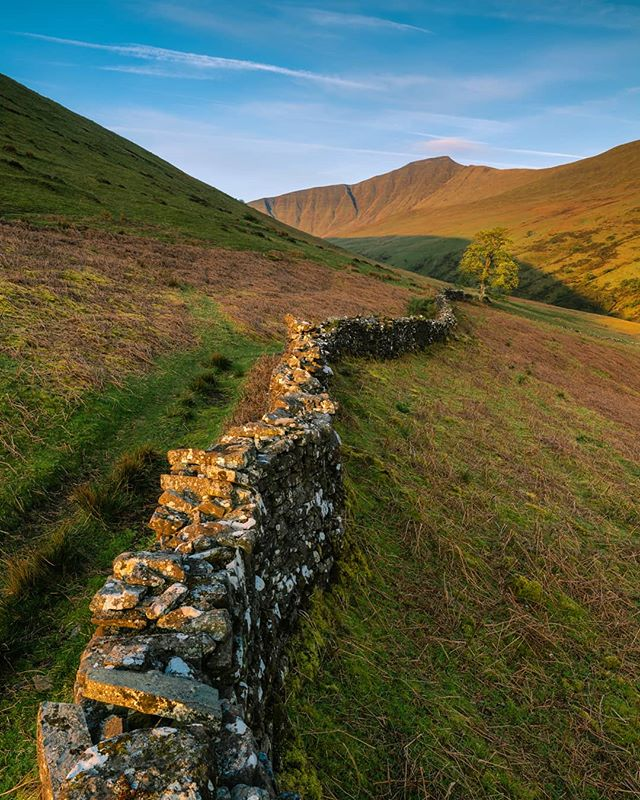 An old stone wall leads to a lone tree lit up by the rising sun with the backdrop of Pen y Fan. A new favourite view possibly?! ------------------------------------------------------- @lumixuk S1R + 24-105mm @kasefilters_uk CPL + 0.9 Softgrad @benrouk Mach 3 Carbon