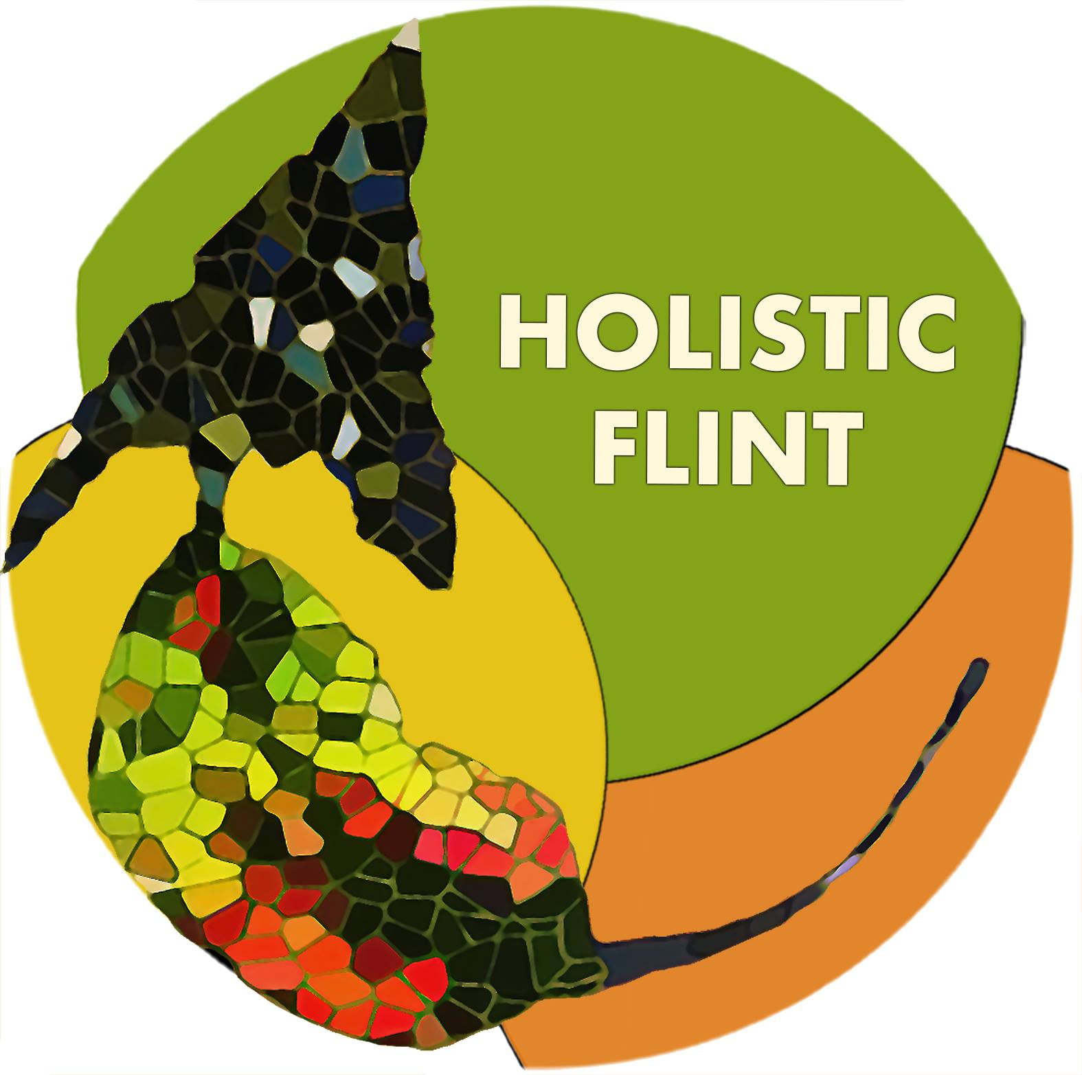 Holistic Flint -