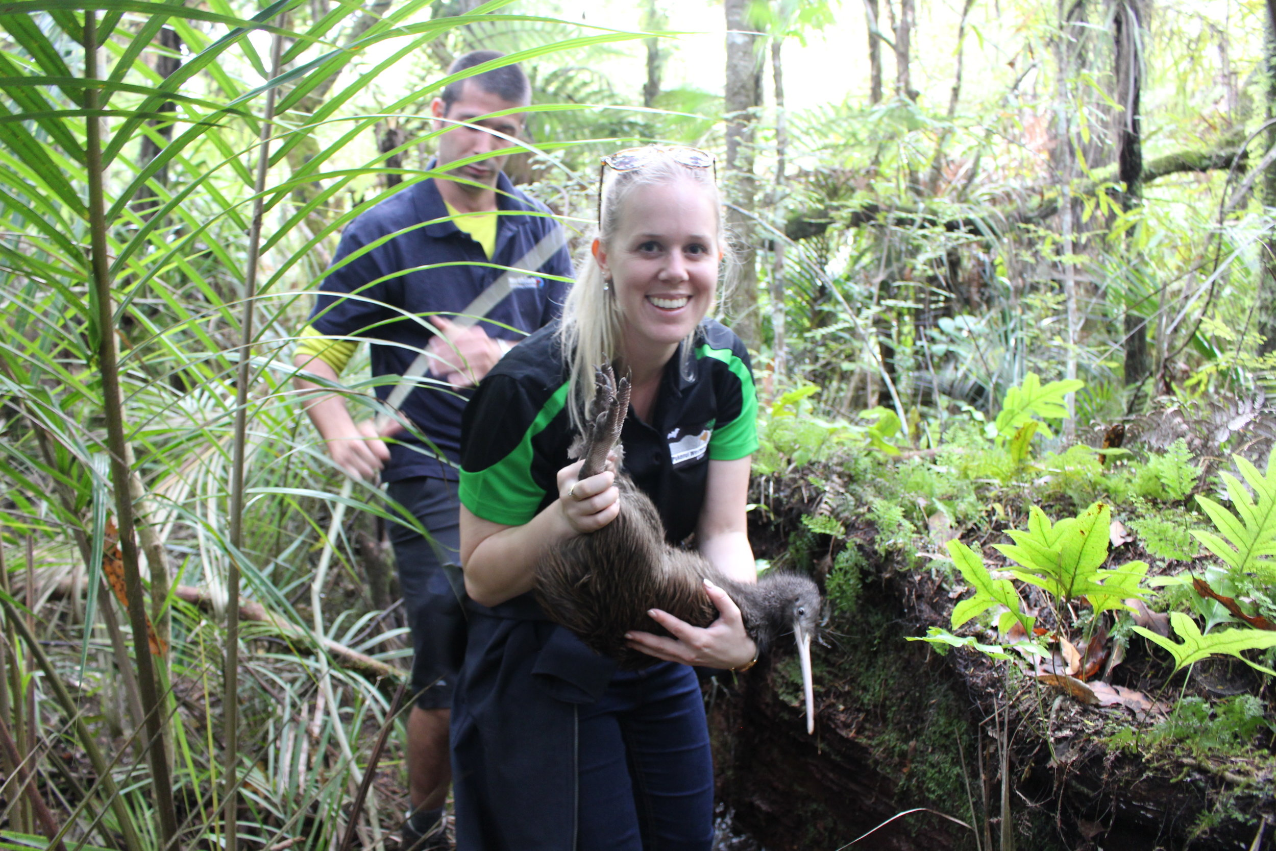 Brooke with kiwi, Talha, named after one of the youngest victims in the March 2019 Christchurch mosque shooting. Twelve kiwi were released into the Pukenui/Western Hills Forest on 6 April 2019.