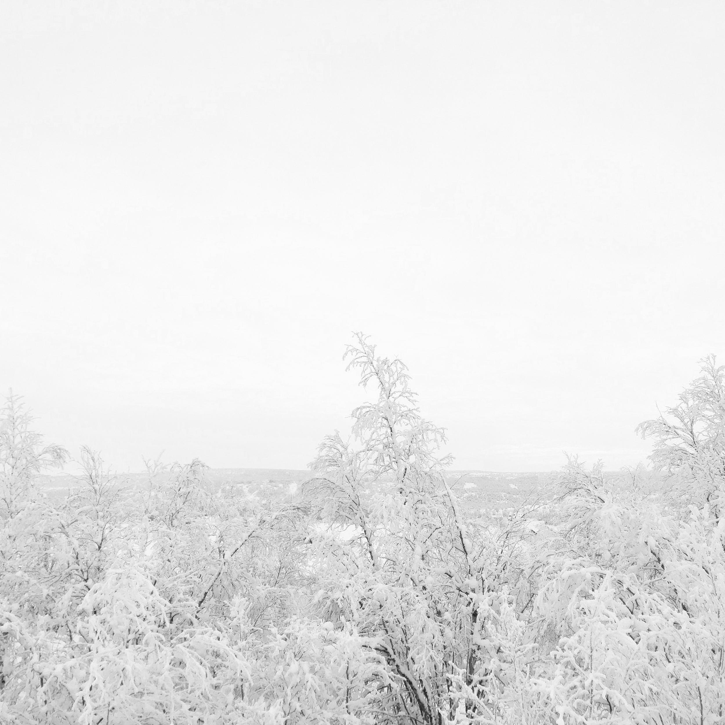 Winter scenery in Kautokeino, Norway.