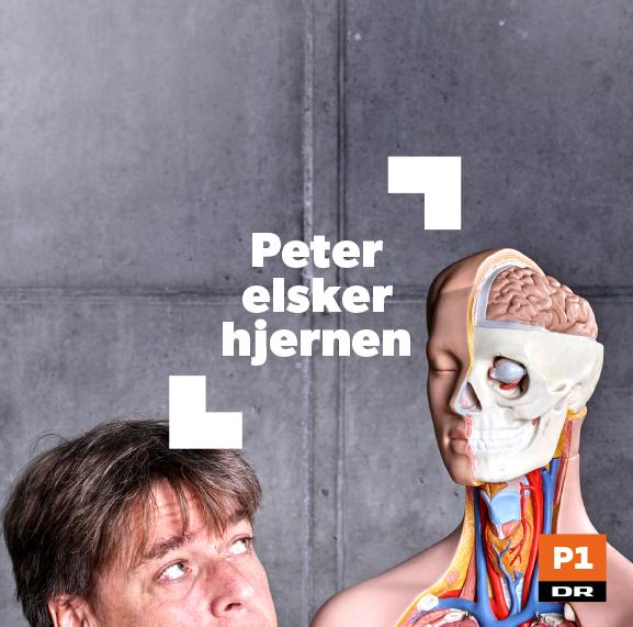 VSO_some_pelskerhjernen.jpg
