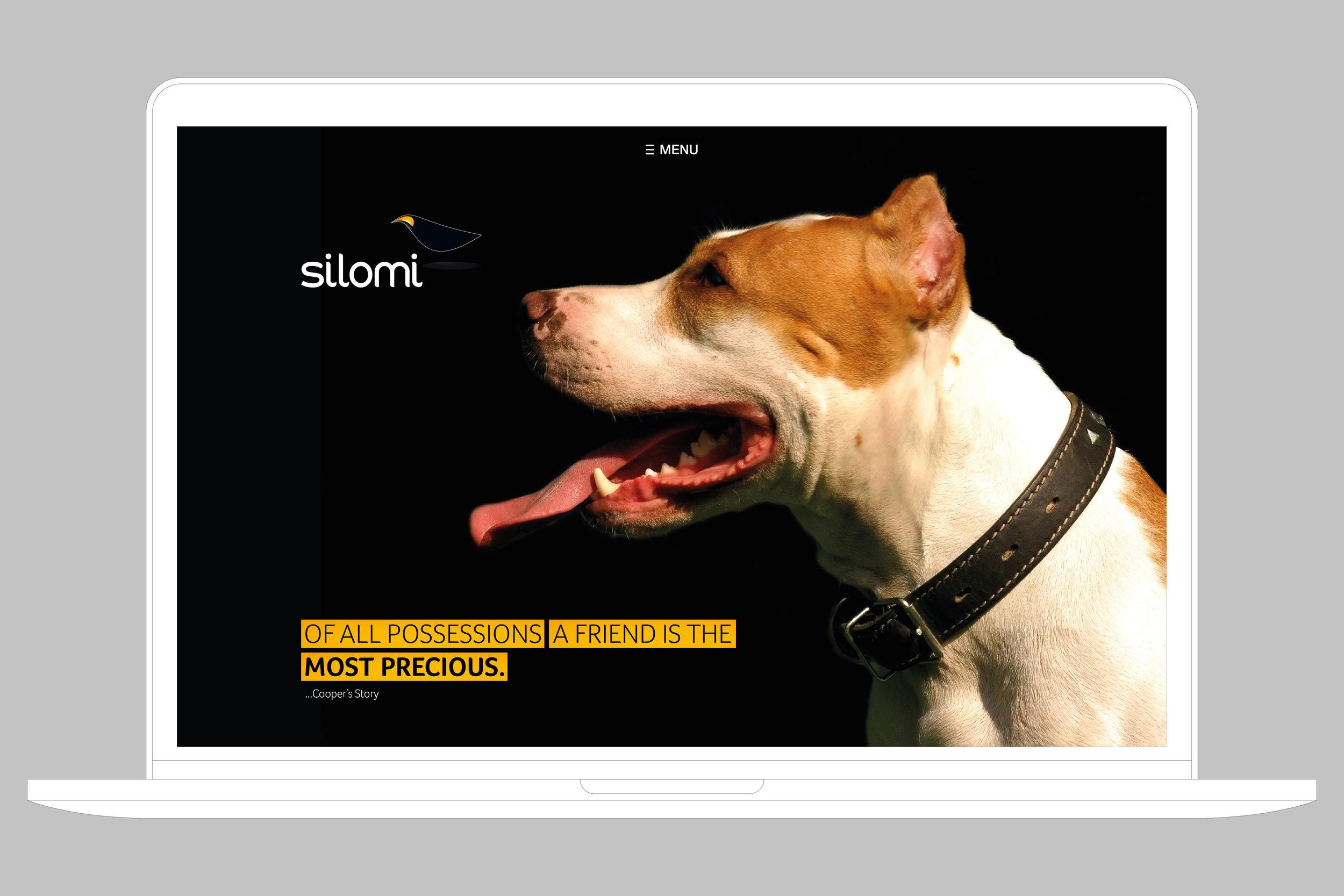 WEBSITE  Consumer - Homepage  Digital Experience