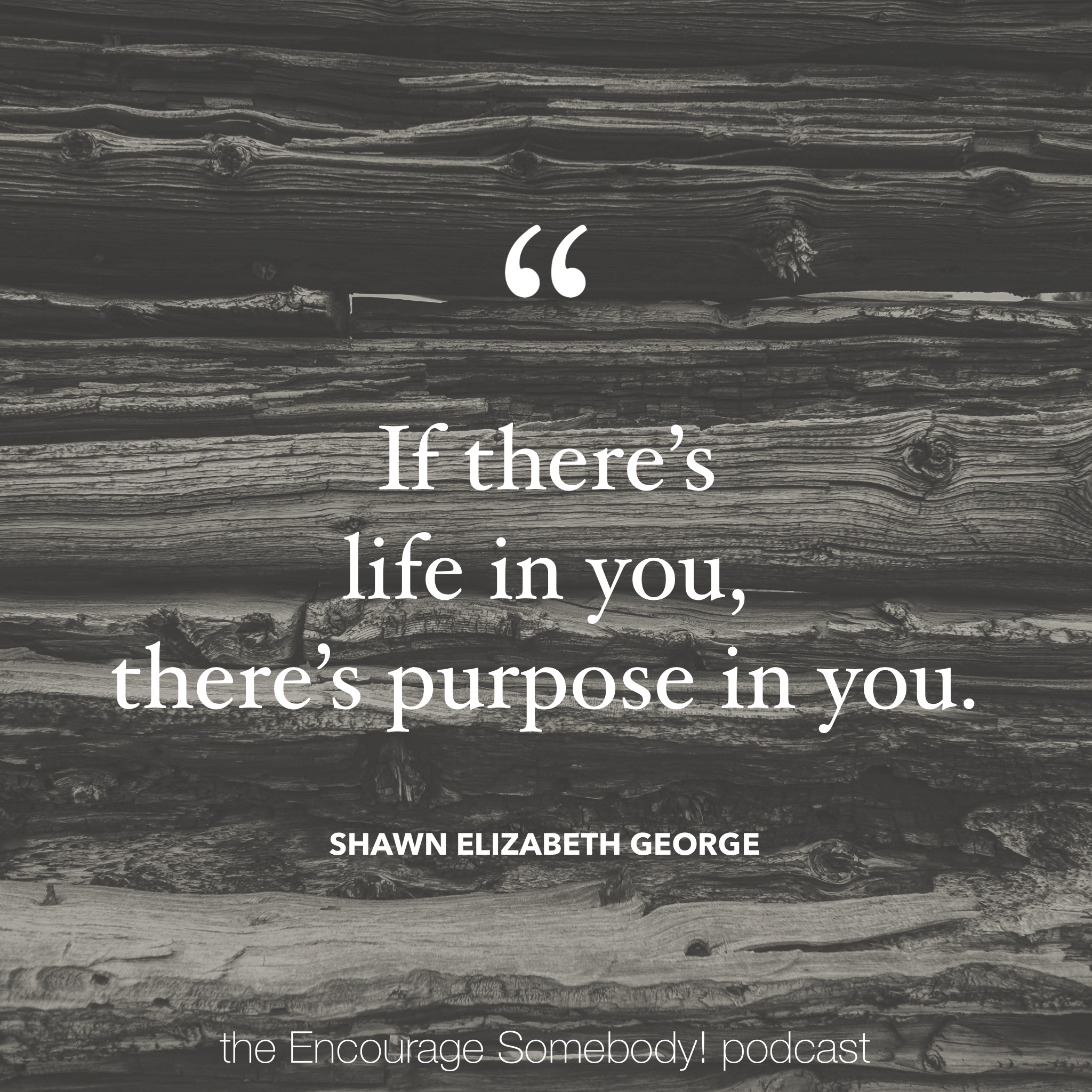 shawn-elizabeth-george-quote-on-purpose.PNG