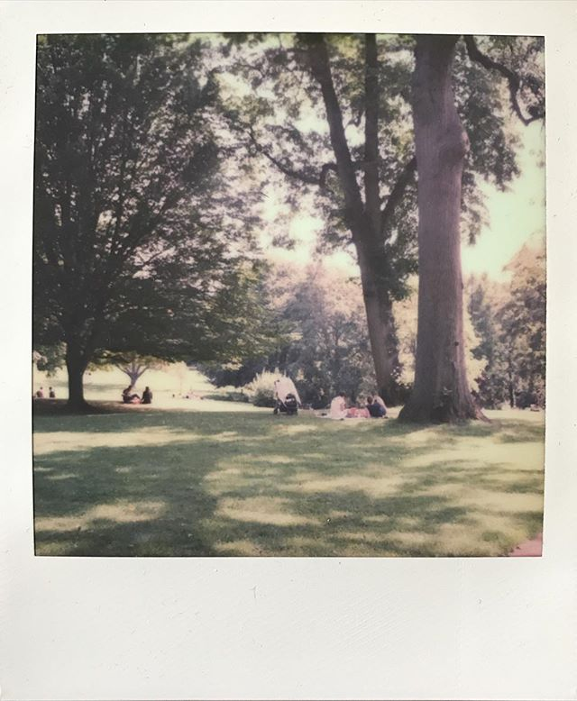 Summer days. #impossibleproject #polaroid #sx70 #analogphotography #filmphotography #summer