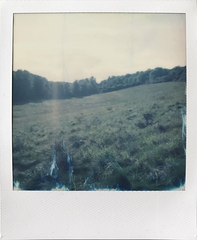 Countryside #sx70 #impossibleproject #damagedfilm #polaroid #faded #colour