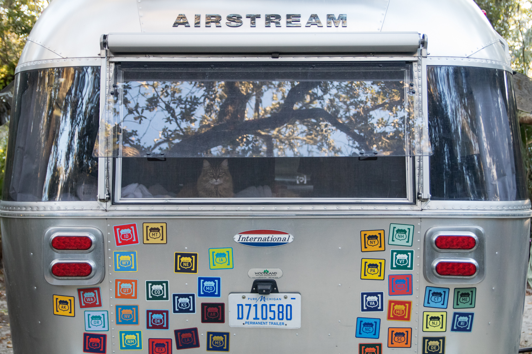 airstream-exterior-noel-window03.jpg