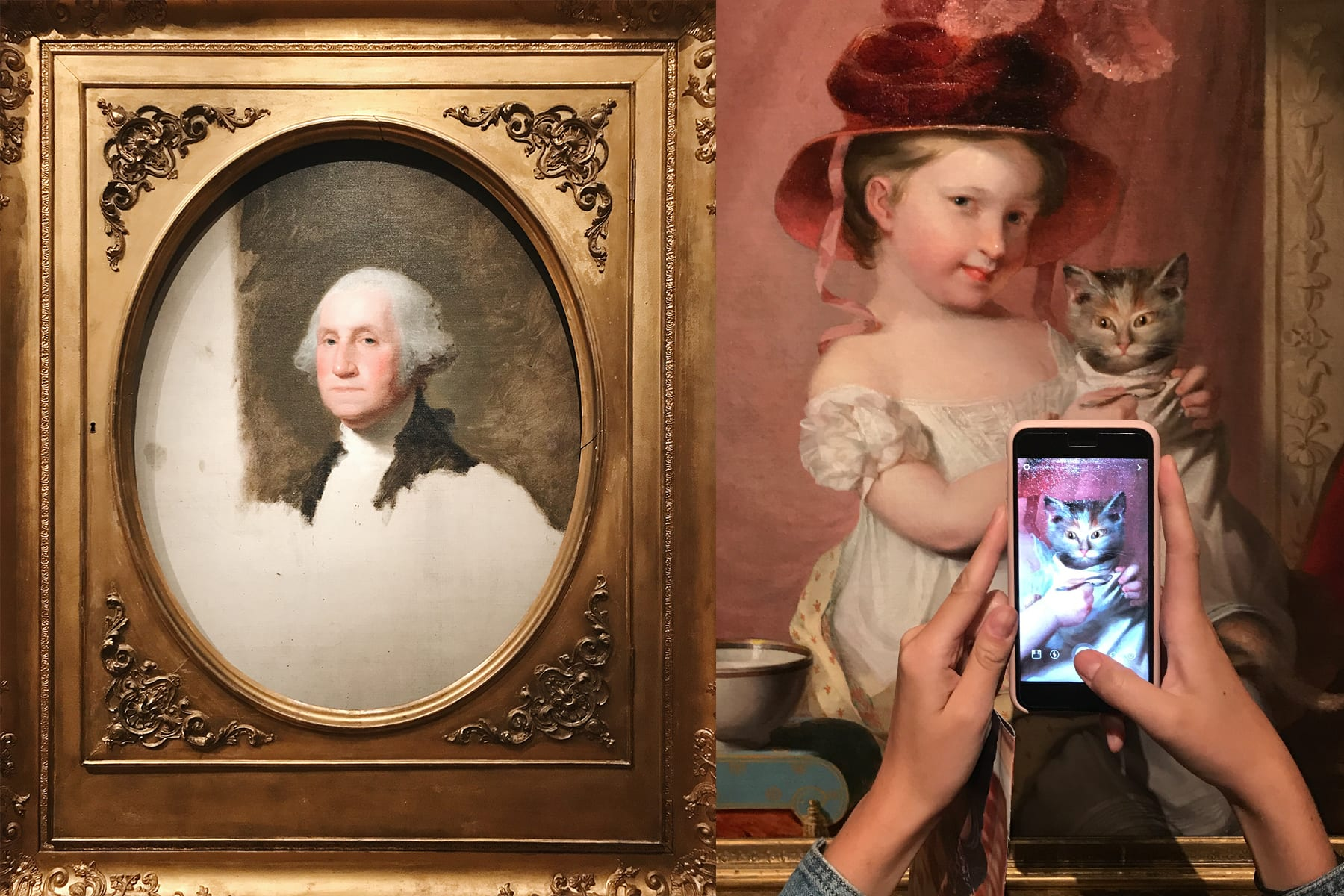 04-MA-journey39-artmuseum-washingtoncats.jpg