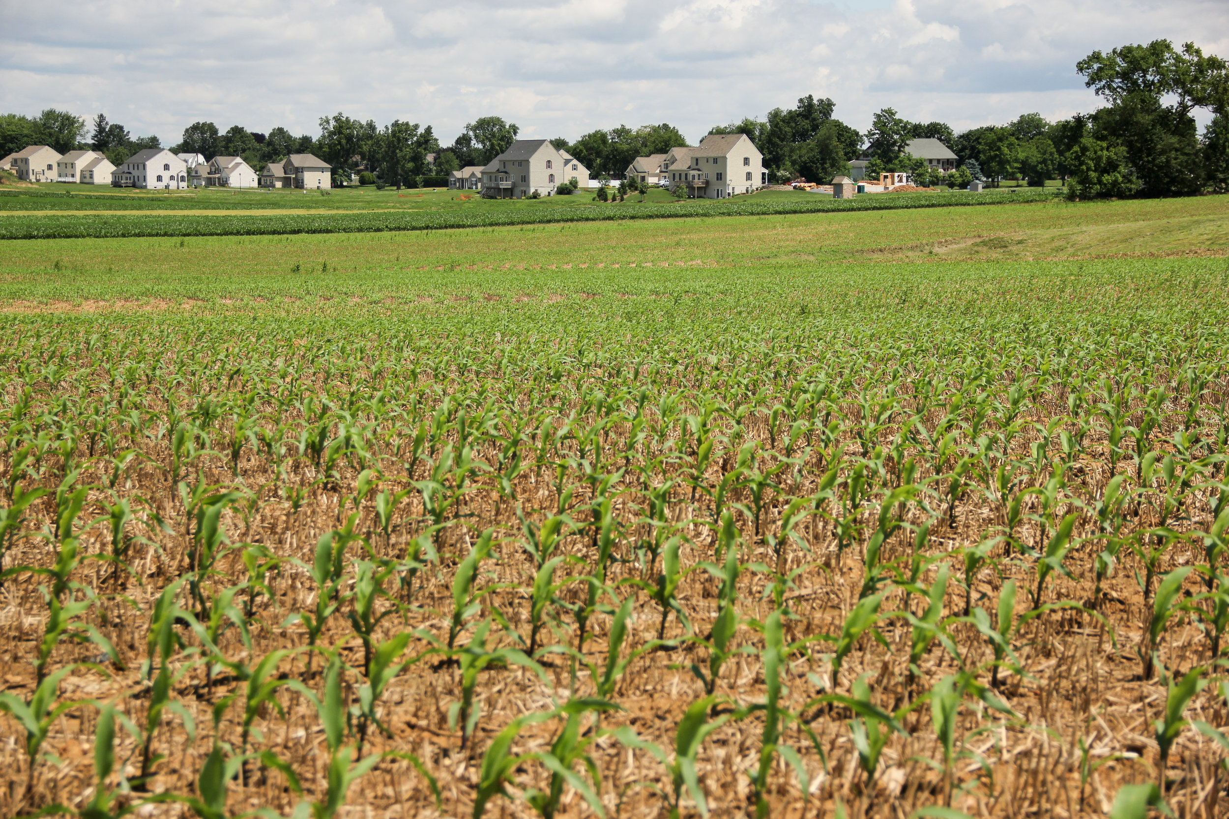 $28.8 Million for Agriculture Conservation in Pennsylvania