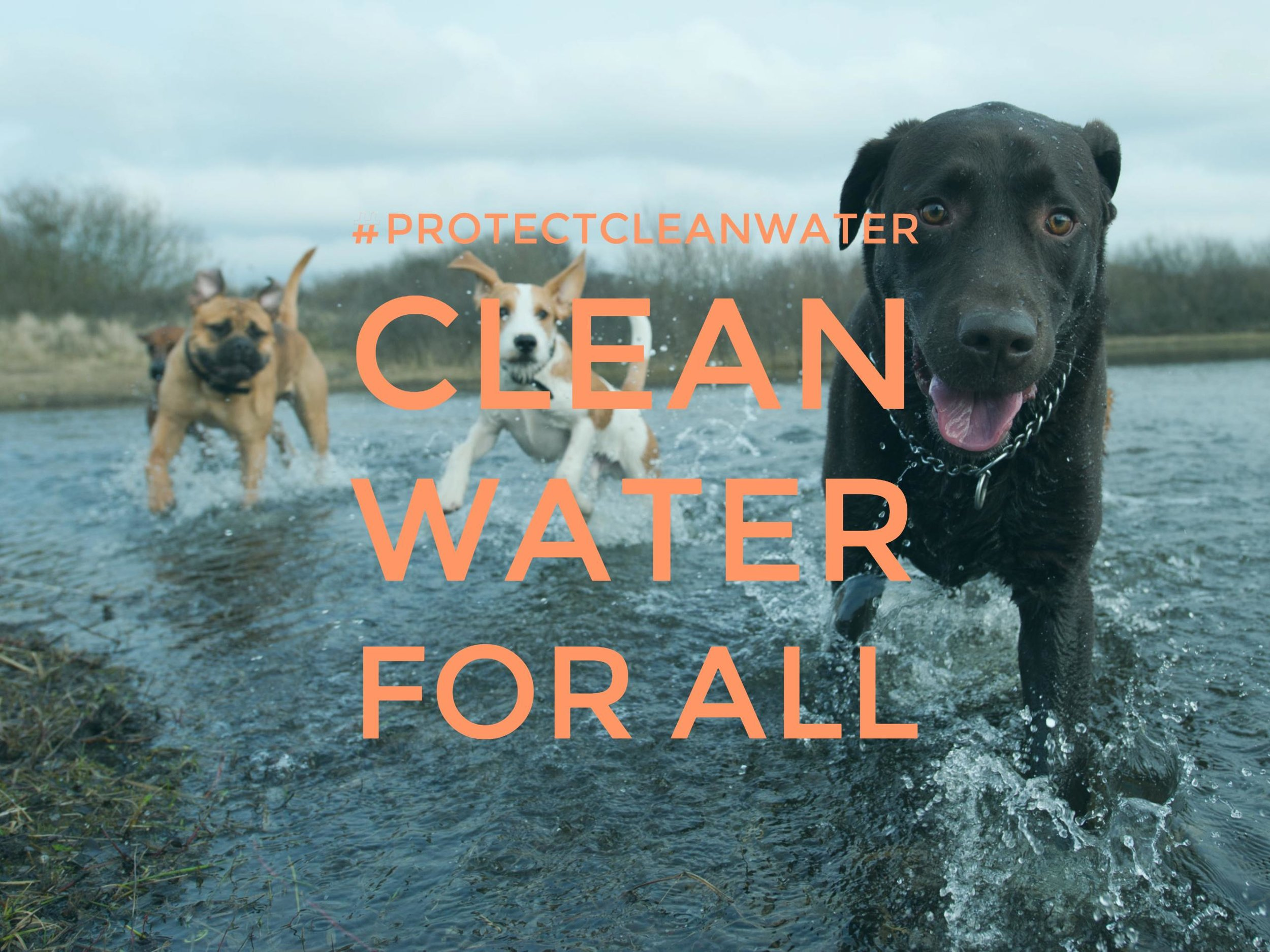 Clean Water for All NMA 2.jpg