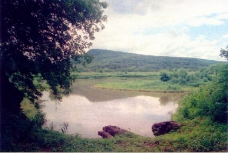 Photo: Lackawanna River Conservation Association