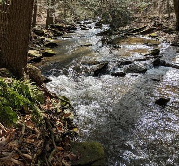 Photos and description courtesy of Lancaster County Conservancy