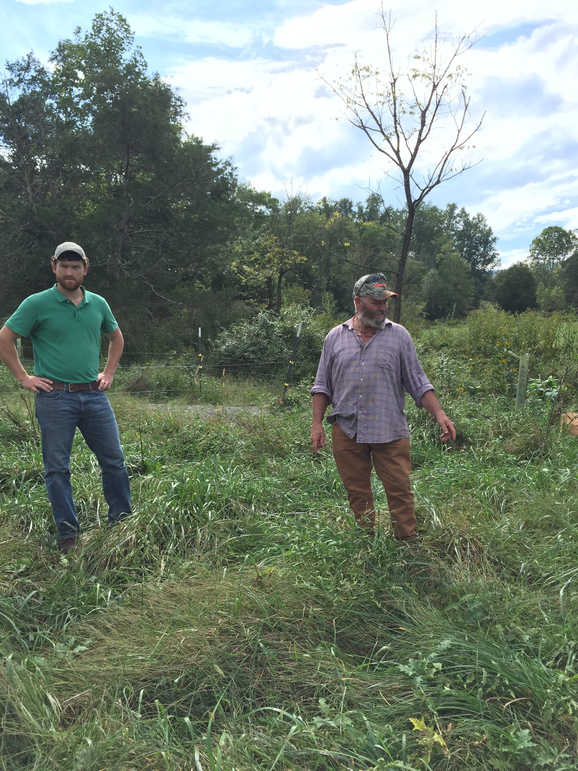 Luke Longanecker, Thomas Jefferson Soil and Water Conservation District and Tony Pullaro, Edgemont Farm, standing in a buffer that was started in 2017.
