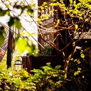 autumnheaderimage3.jpg