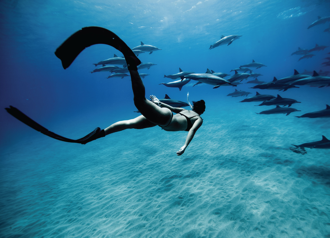 DEEP BLUE SEA - Explore the verdant beauty and unspoiled biodiversity of the deep sea.