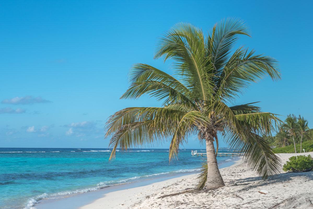Spotts-Beach-3.jpg