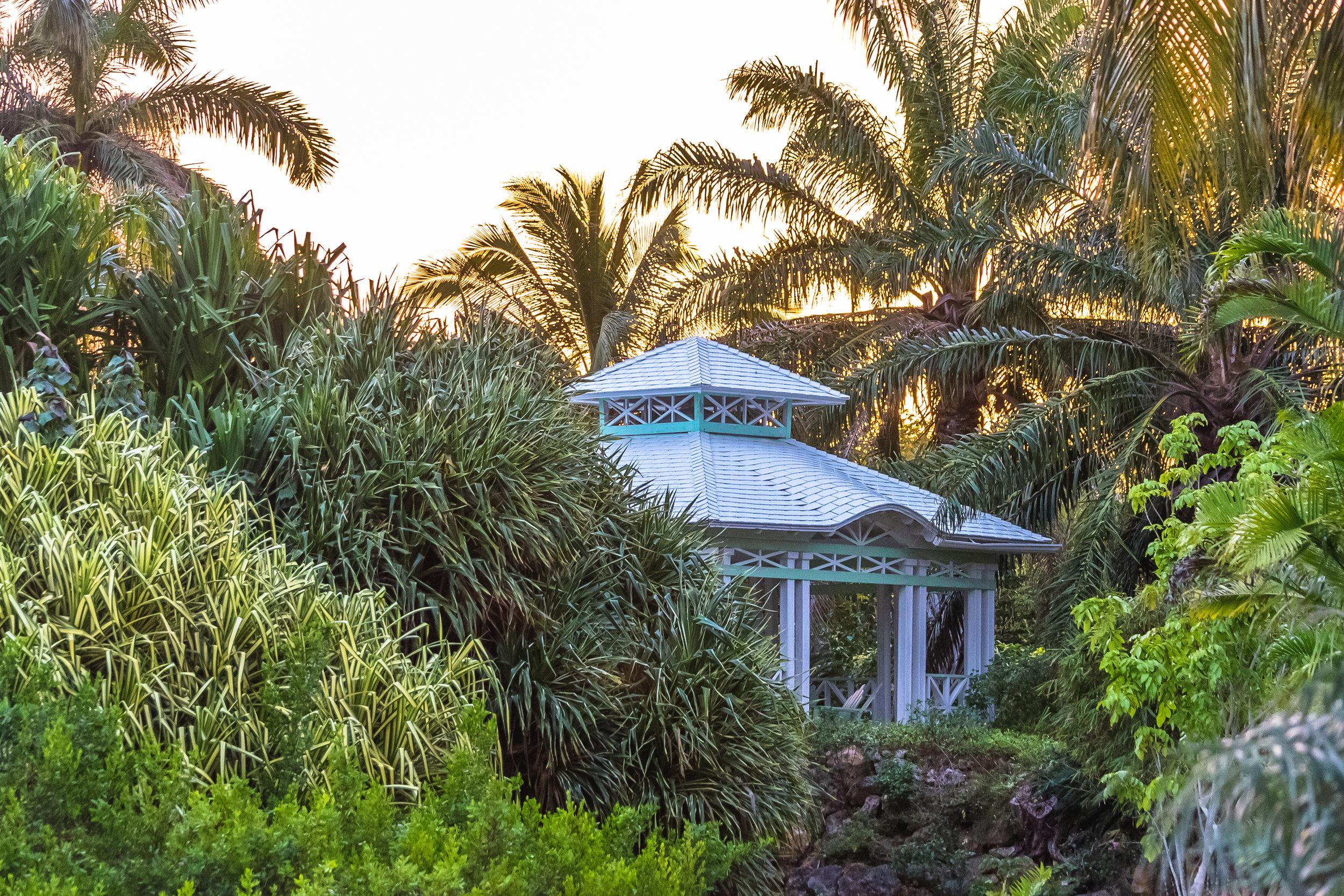 Botanic Park Cayman