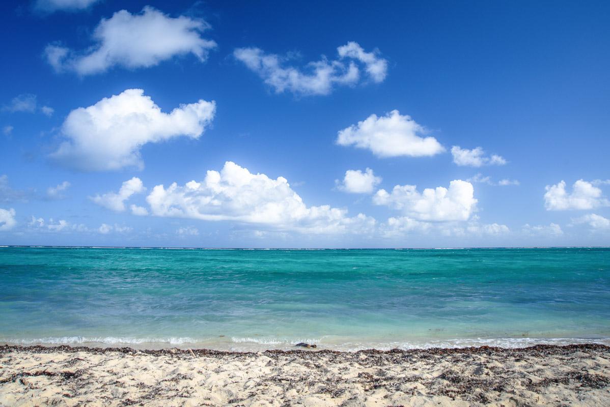 Barkers-Beach-4.jpg