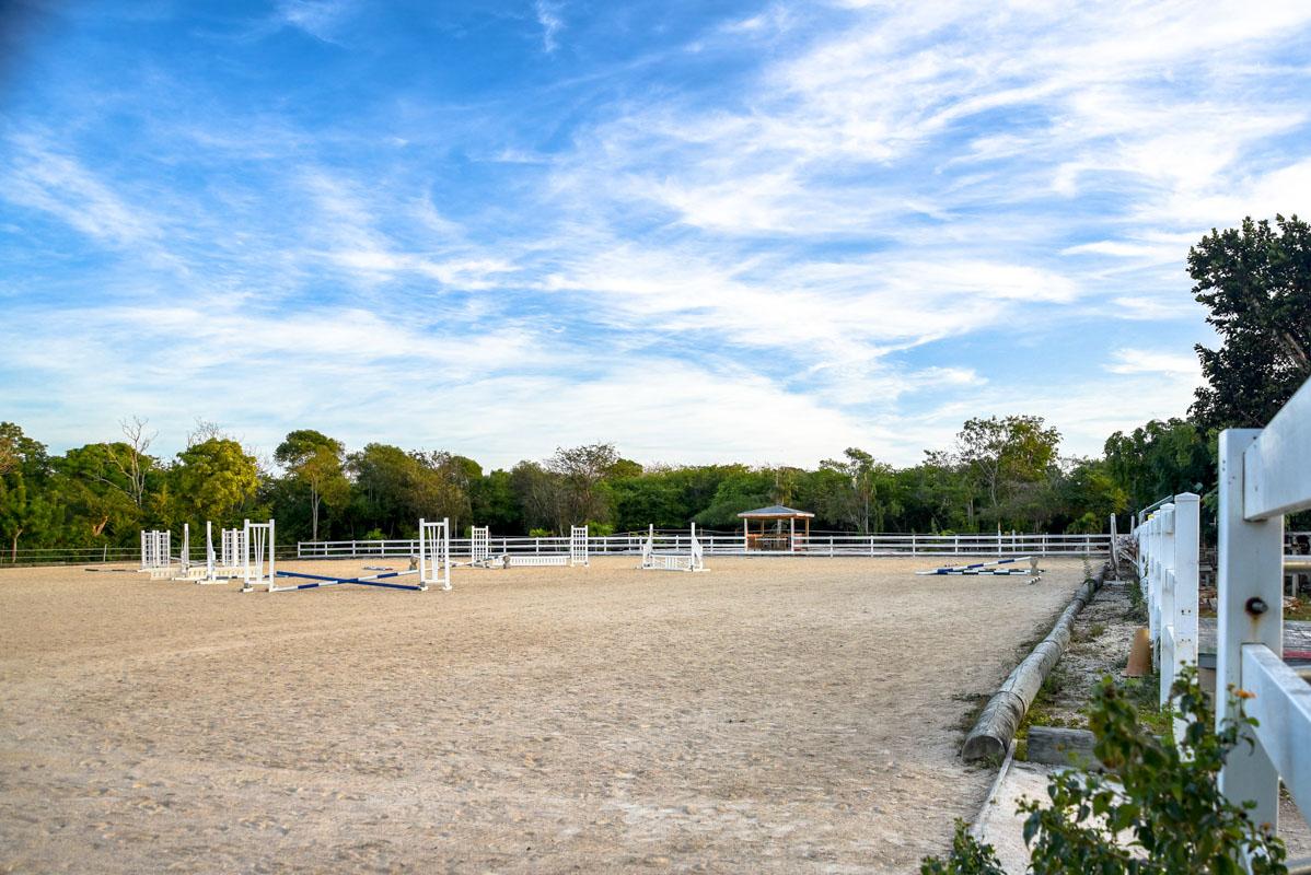 Equestrian-Centre-3.jpg
