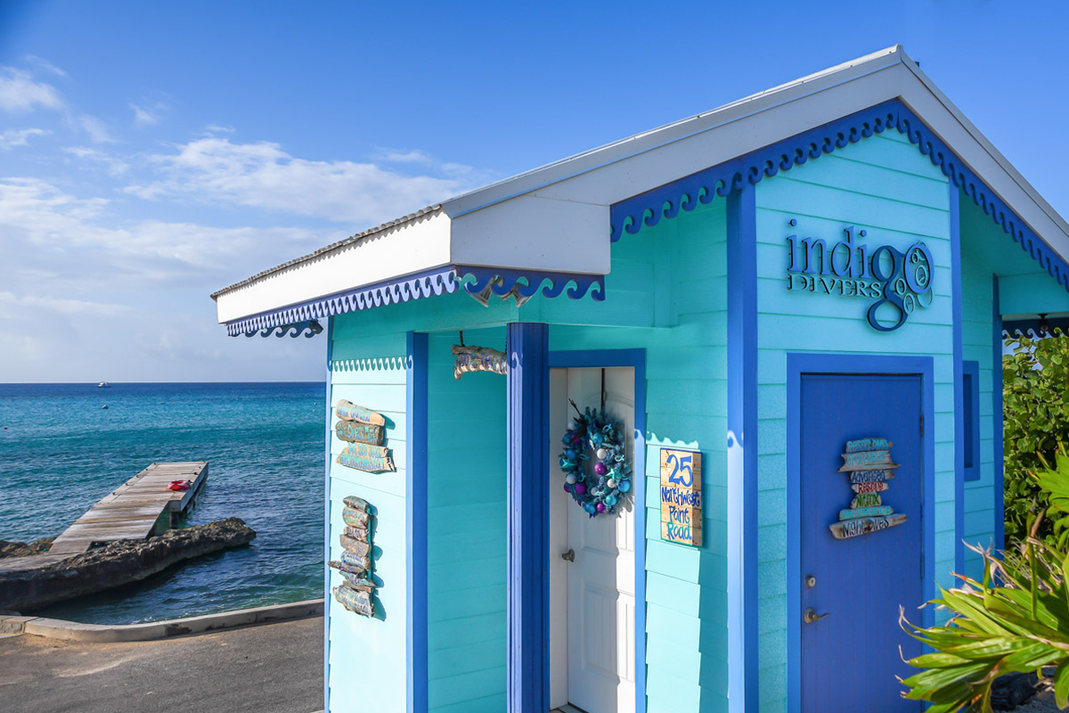 Indigo-Divers-5.jpg